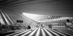 Titan - photos of Calatrava's Liège-Guillemins train station by Vincent Botta