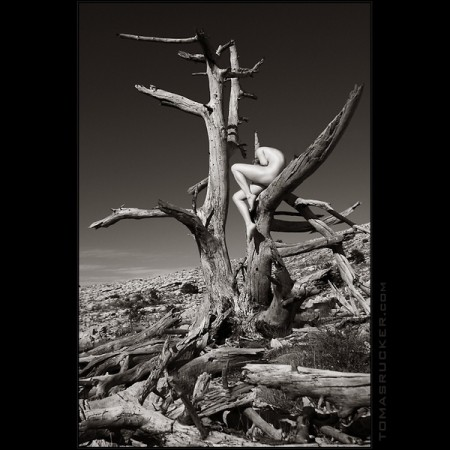 Art nude – black and white nature portraits by Thomas Rucker