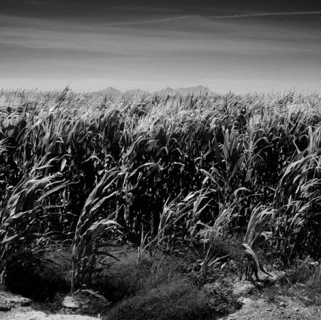 Pinal County, Arizona – black and white landscape photos by David McGhee