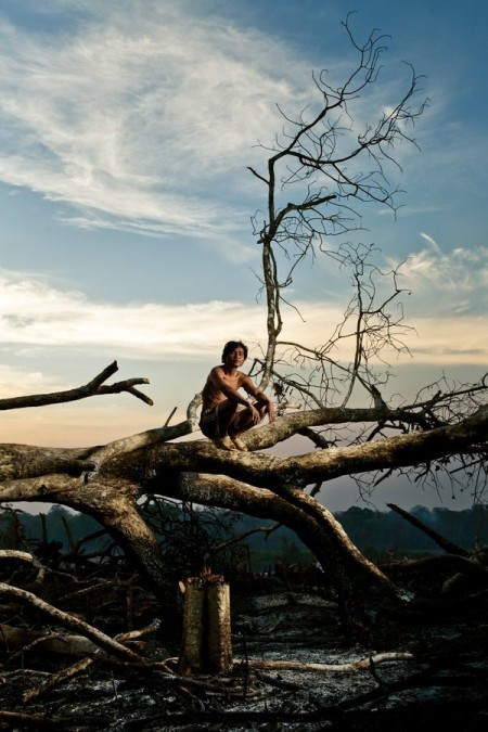 Burned – slash and burn cultivation in rural Cambodia – photo journalism from Thomas Cristofoletti