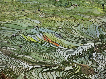 Edward Burtynsky's 'Water' examines the world's most precious resources through aerial photography