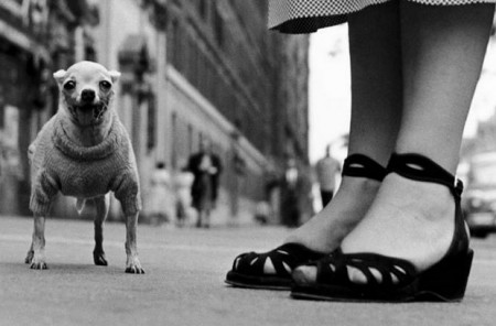 New York street photography laid bare in new documentary