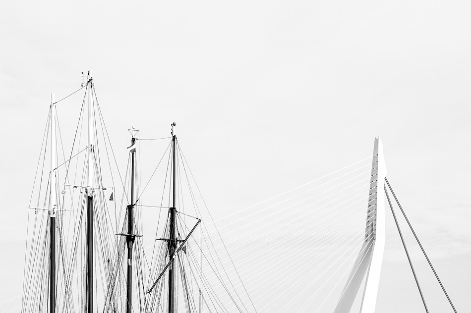 Ship masts and the Erasmus Bridge, Rotterdam