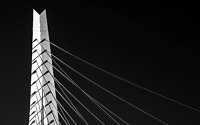 Photo blog photo: 'Rotterdam Erasmus Bridge'