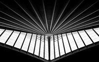 Photo blog photo: 'Bilbao Airport Ceiling'