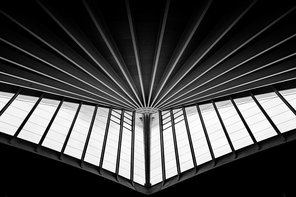 Abstract photo of Bilbao Airport's ceiling - designed by Santiago Calatrava